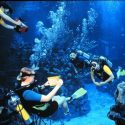 Picture of SCUBA certified visitors to EPCOT Center in Orlando, FL and the Disney DiveQuest experience.