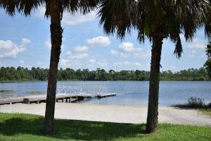 Picture of Lake Claire at UCF showing boat dock, beach and palm trees.