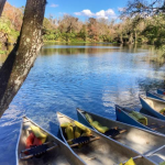 Picture of Wekiwa Springs State Park in Orlando, Florida. shows springs and six tandem canoes.
