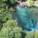 people snorkeling at florida natural spring